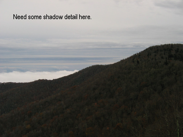 NeedShadowDetail