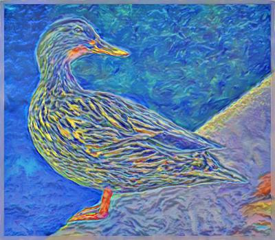 Duckie- Brushed Relief -