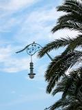palm & lamp