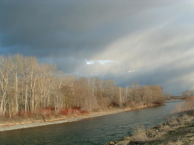 river_mist.JPG