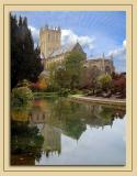 Reflected glory! Wells Cathedral