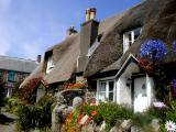 Cadgwith thatch (2007)