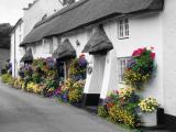 Cottage at Branscombe