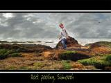 Rock pooling, Sidmouth