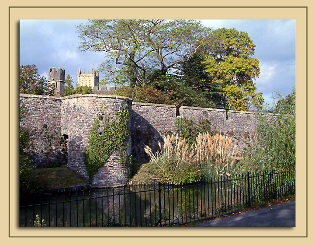 Moat and rushes, Wells