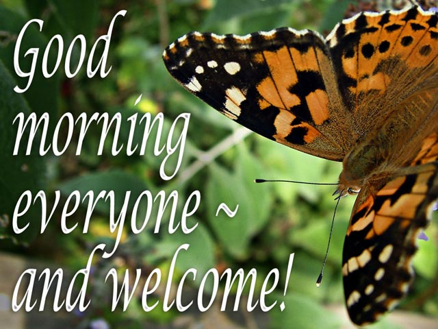 Welcome slide from the Butterfly series
