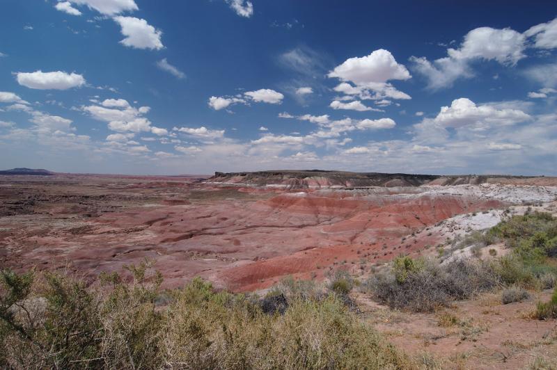 Painted Desert 119