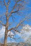 4165_Wellsville-Mountains.jpg
