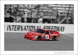 Dale Jr. on track color and bw