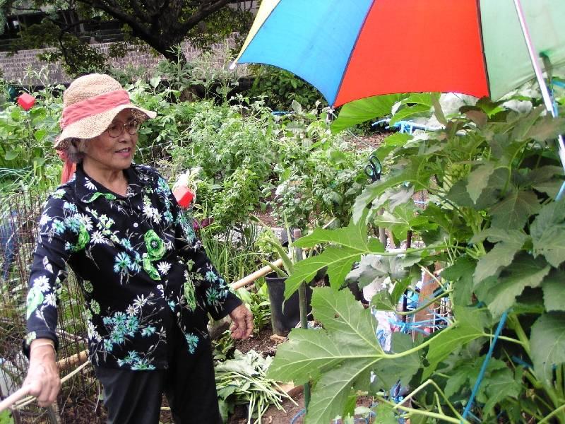 Community gardener