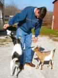 pb_Goats 0311 - 010.jpg