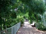 007 walkway temperate house 2.JPG