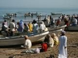 Barka fish market
