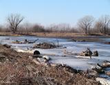 Frozen Marsh Land