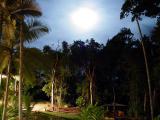 Licuala Lodge, Mission Beach
