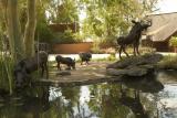 camp warthogs