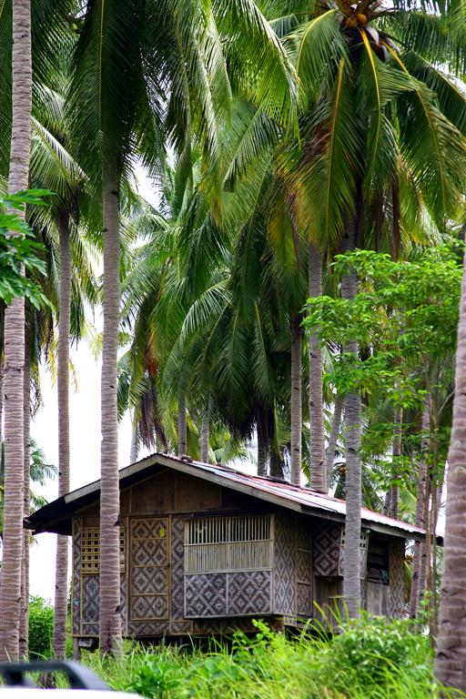 Humble Filipino provincial home. No power, no water, just plenty of fresh air