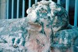 Silifke museum lion
