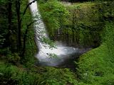 Lush Tunnel Falls Pool