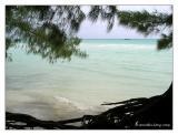 Bahamas National Park