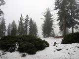 Snowy Mountain Near Big Bear Lake
