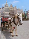 15.On the move-Antwerpen Grote Markt