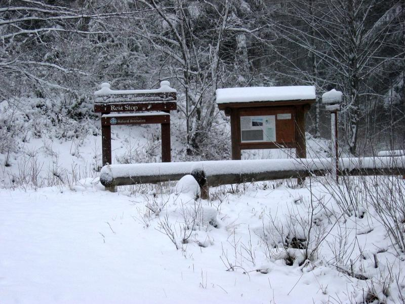 12.28.2003<br> </br><br>Paw Print Rest Stop</br>