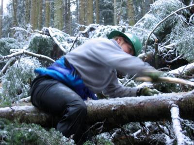 12.26.2003<br> </br><br>Lynn</br><br>Sawing Limbs</br>