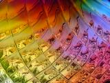 Through the (Multicolored) Looking Glass (Color - 5th place exhib)