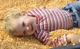 Bed of Corn