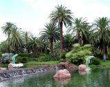 Fountains - Mirage Casino