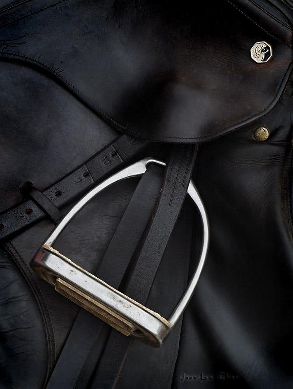 Chrome on black Leather.