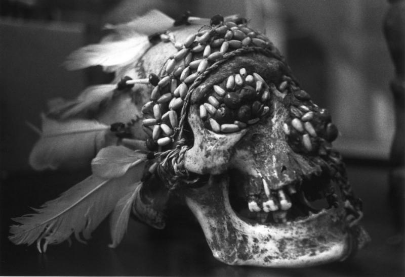 Decorated Skull Tropen Museum
