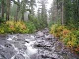 Upper Rainbow Falls, Mt. Rainier National Park