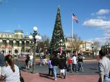 Christmas Tree display, Main Street