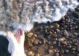 ZEN feet
