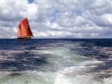 Red sailed clipper