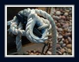 Rope trick, Budleigh beach