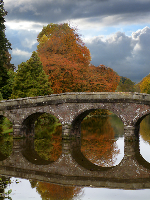Trees and bridge, Stourhead