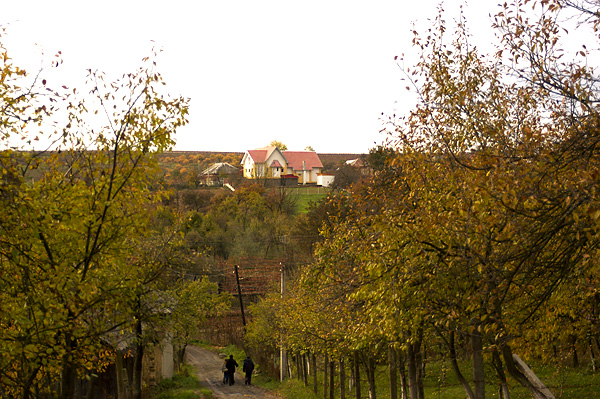 view from the hillside