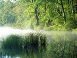 Beech-Lake.jpg