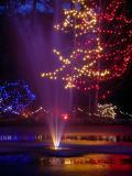 Van Dusen christmas lights