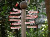 Where to go ?