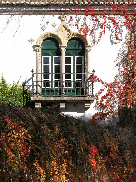 A View to Autumn