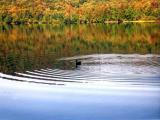 Adirondack Lake 1