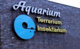Köln Terrarium