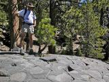 Top of Devil's Postpile