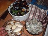 mussels, quahogs and cherrystones
