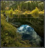 3397-Pond-reflections.jpg