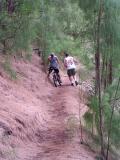 Hiking or Biking?